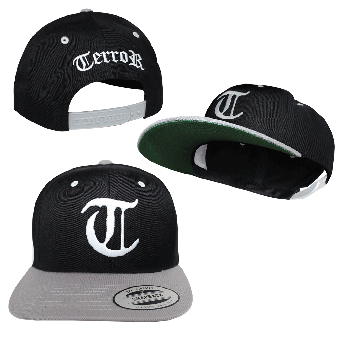 "Terror ""Logo"" Snapback Cap (grey, onesize)"