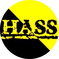 Hass (schwarz/gelb) - Button (2,5 cm) 581