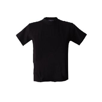 Hanes Kids T-Shirt (black)