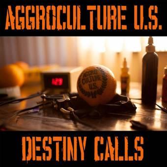 """Aggroculture U.S. """"Destiny Calls"""" EP 7"""" (lim. 100, green)"""