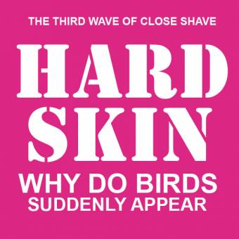 "Hard Skin ""Why do birds suddenly appear"" CD"